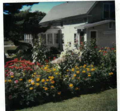 Flower garden at Doug's first house on Pine Street