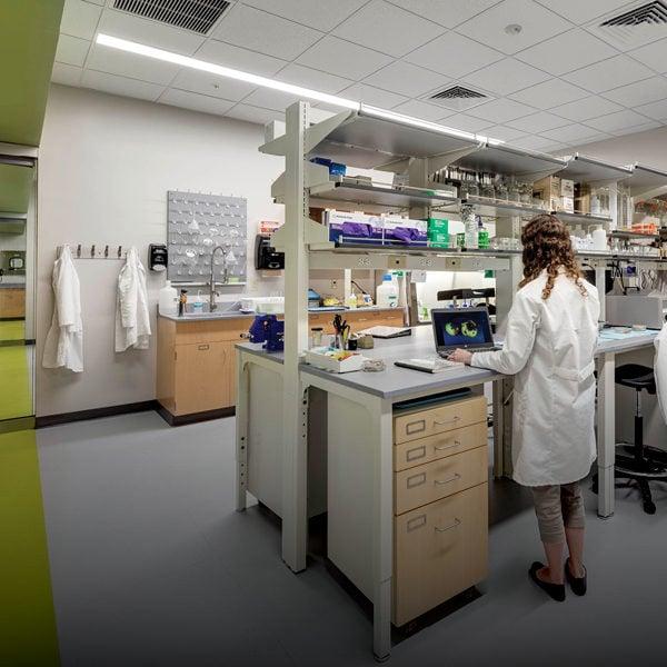 Laboratory/R&D